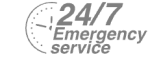 24/7 Emergency Service Pest Control in Chessington, Hook, KT9. Call Now! 020 8166 9746