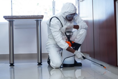 Emergency Pest Control, Pest Control in Chessington, Hook, KT9. Call Now 020 8166 9746